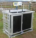 FarmIT 3000 Sheep Weigh Crate